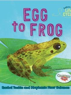 Egg to Frog