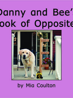 Danny and Bee's Book of Opposites