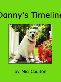 Danny's Timeline