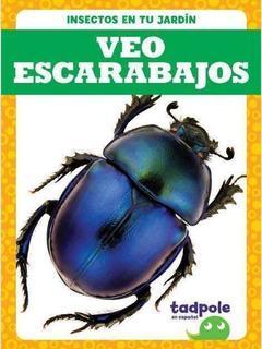 Veo escarabajos