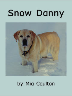 Snow Danny