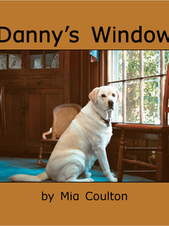 Danny's Window