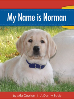 My Name Is Norman