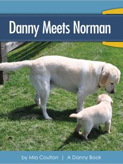 Danny Meets Norman