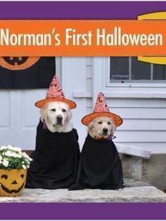 Norman's First Halloween