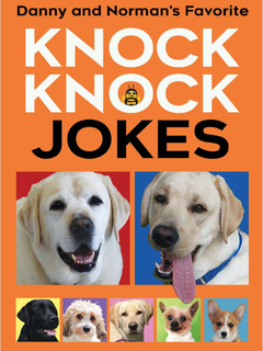 Danny and Norman's Favorite Knock Knock Jokes