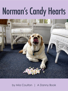Norman's Candy Hearts