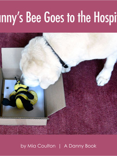 Danny's Bee Goes to the Hospital