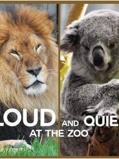 Loud and Quiet at the Zoo