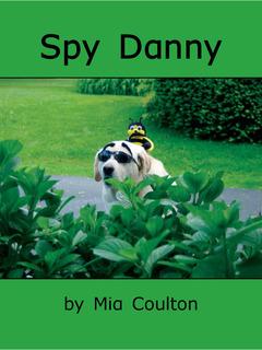 Spy Danny