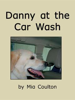 Danny at the Car Wash