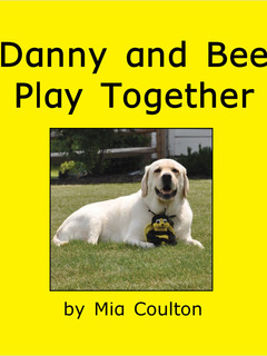 Danny and Bee Play Together