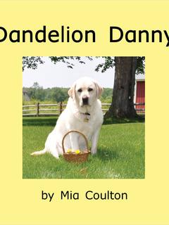 Dandelion Danny