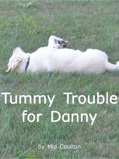 Tummy Trouble for Danny