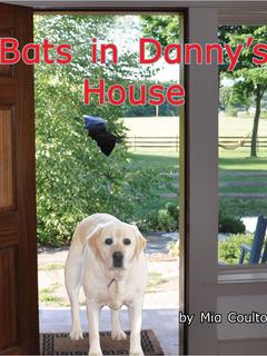 Bats in Danny's House