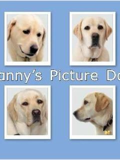 Danny's Picture Day