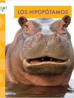 Los hipopótamos