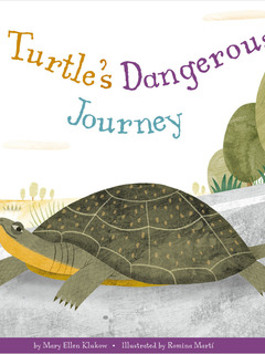 A Turtle's Dangerous Journey