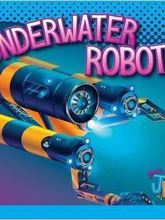 Underwater Robots