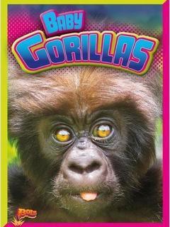 Baby Gorillas