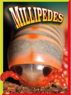 Millipedes