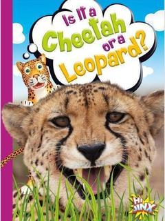 Is It a Cheetah or a Leopard?