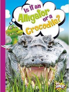 Is It an Alligator or a Crocodile?