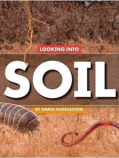 Looking Into Soil