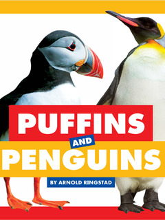 Puffins and Penguins