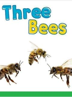 Three Bees: The Sound of EE