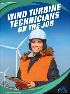 Wind Turbine Technicians on the Job