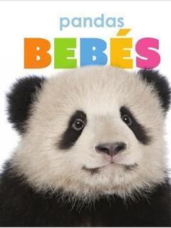 Pandas Bebés