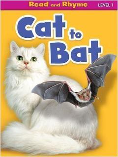 Cat to Bat