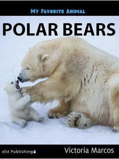 My Favorite Animal: Polar Bears