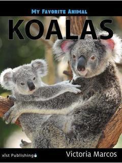 My Favorite Animal: Koalas