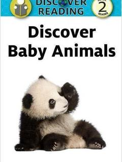 Discover Baby Animals