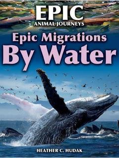 Epic Migrations by Water