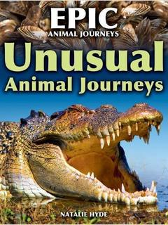 Unusual Animal Journeys