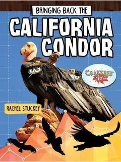 Bringing Back the California Condor