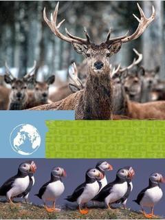 Wildlife Worlds Europe