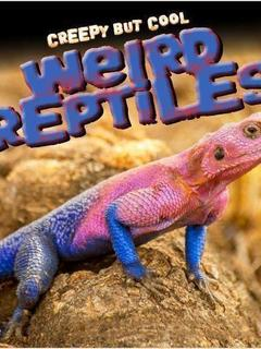 Creepy But Cool Weird Reptiles