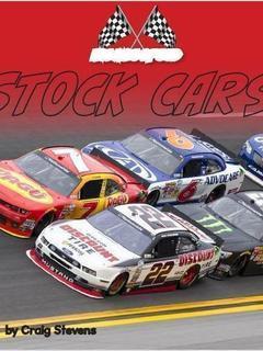 Insane Speed: Stock Cars