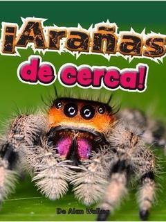 ¡Arañas de cerca!