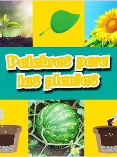 Palabras para plantas