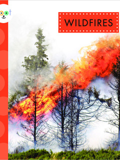 Wildfires