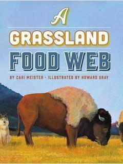 A Grassland Food Web