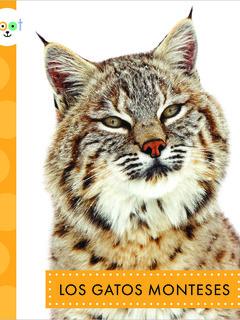 Los gatos monteses