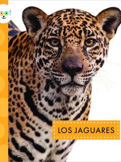 Los jaguares