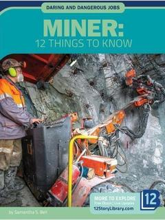 Miner: 12 Things to Know