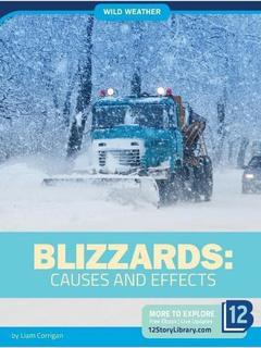 Blizzards: Causes and Effects